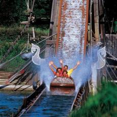 attraction buche walibi