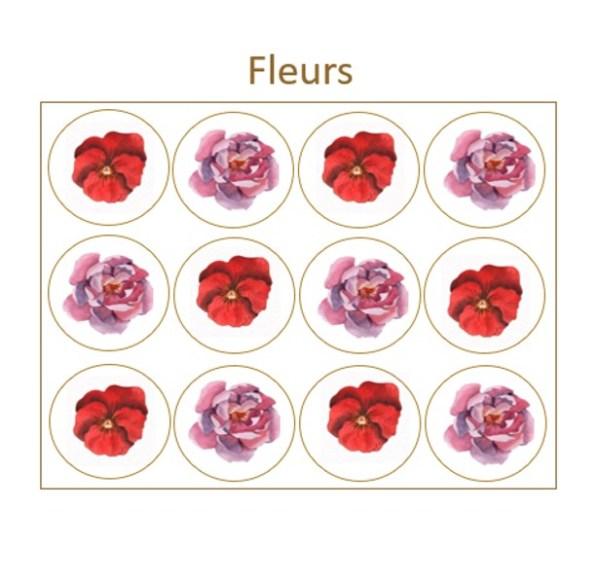Les Prodigieux  Fleurs x12