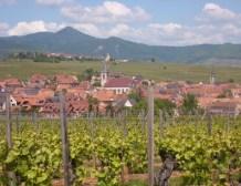 Alsace : une loi, une collectivité pour l'Alsace !