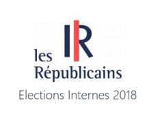 Elections internes LR 2018 : les résultats dans le Bas-Rhin