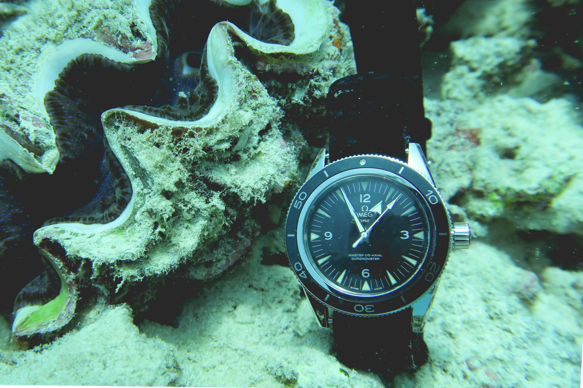 Omega Seamaster 300 Co-Axial - Coquillage