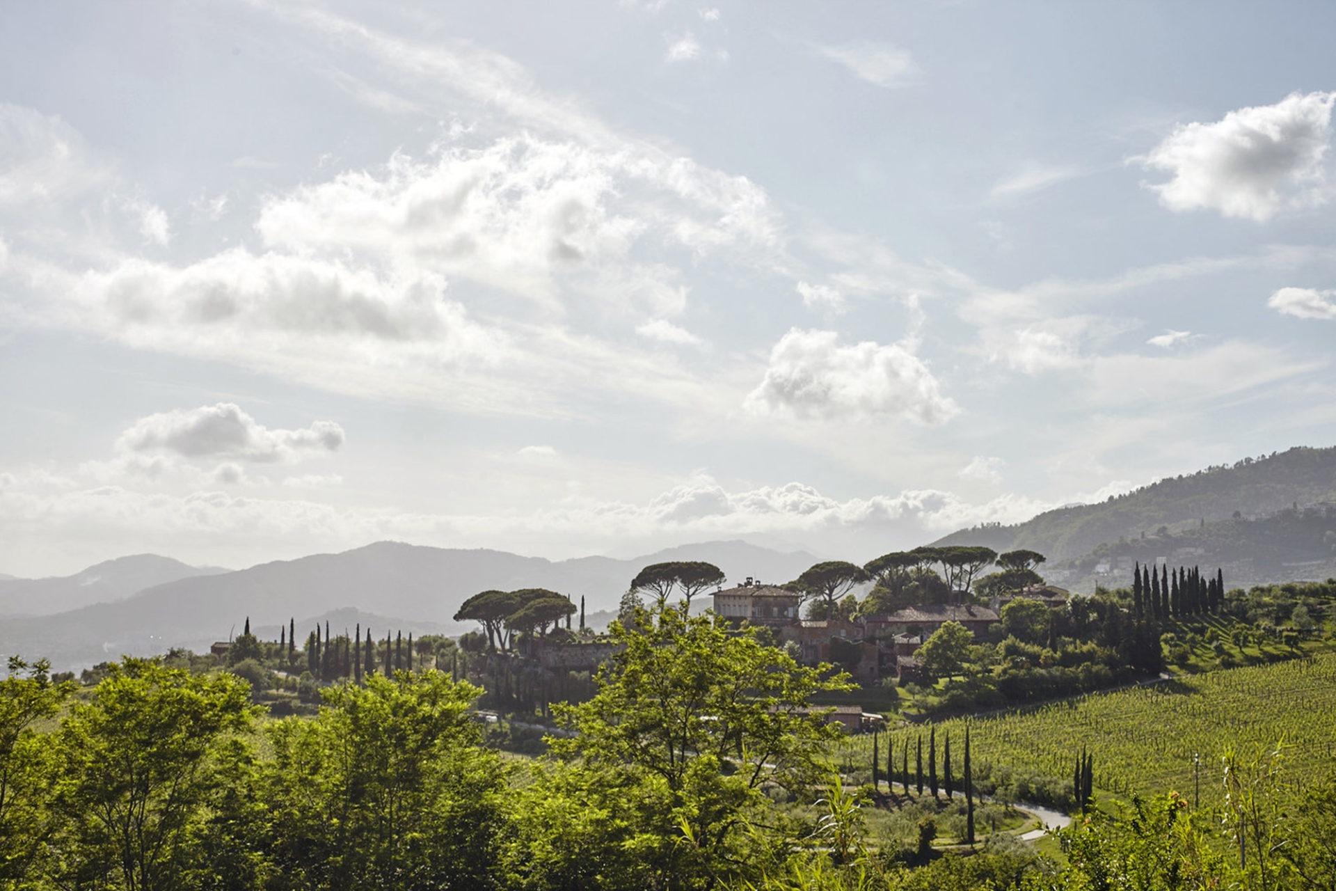 Sélection de vin au restaurant Le George - Tenuta di Valgiano (source : one A Wines)