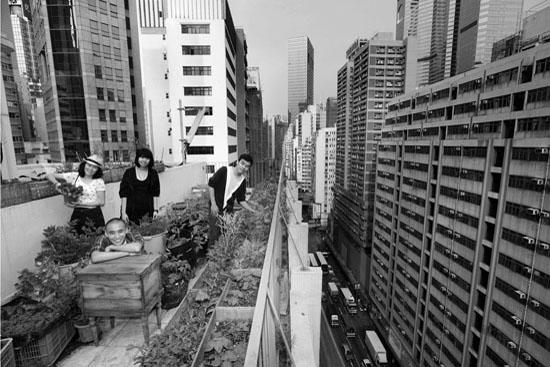 Hong Kong Honey, Michael LEUNG