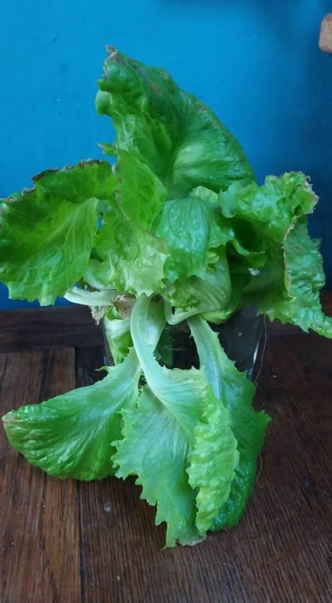 salad-in-jar2