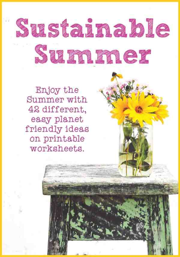 sustainable summer book cover