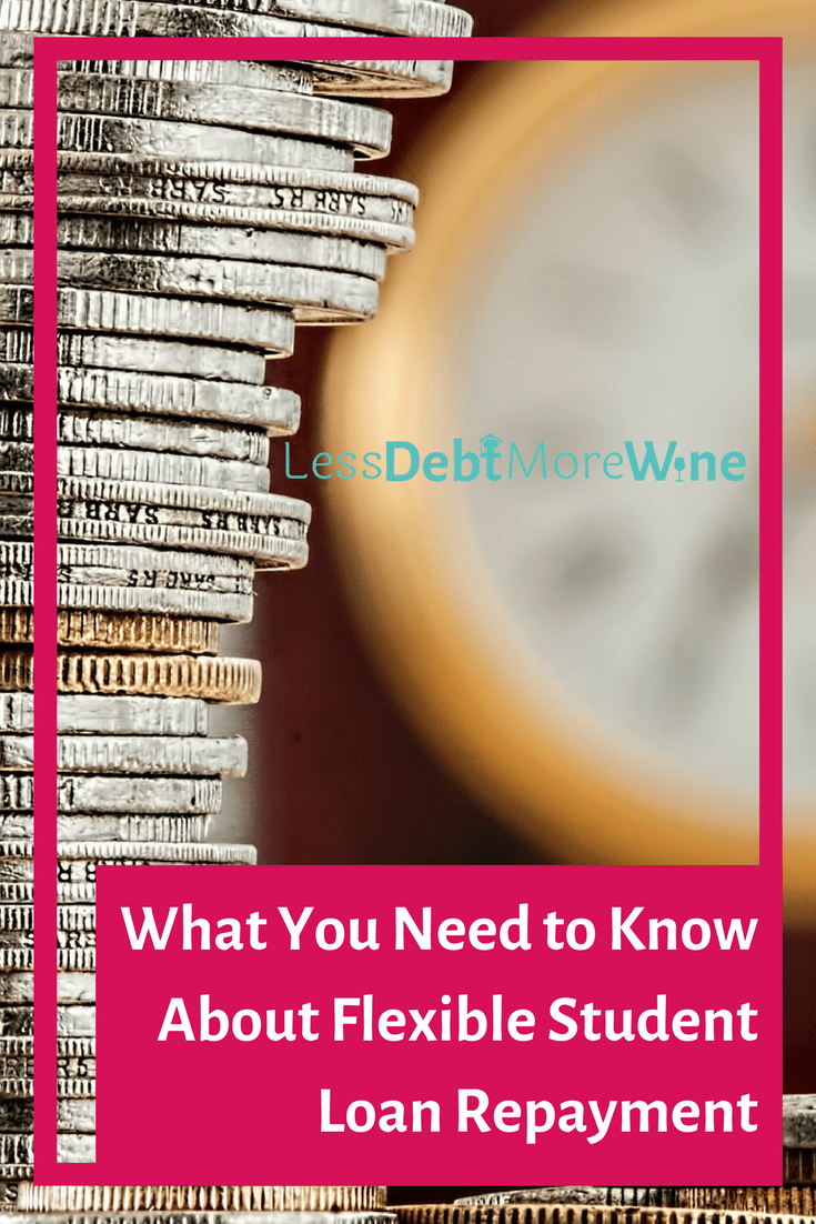 What You Need to Know About Flexible Student Loan Repayment Plans - Less Debt, More Wine