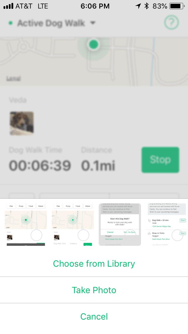 Rover card in Rover app