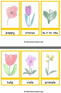 Flowers Worksheets And Downloads