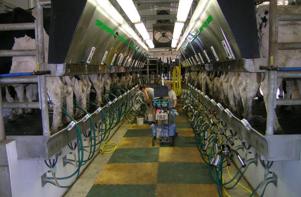 Sleepy Eye Mn Dairy Parlor Holding Building Lester