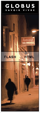 Flash o HTML?