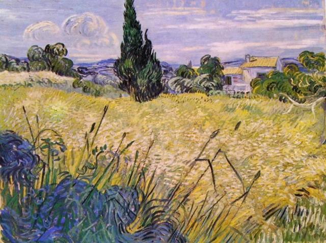 Vincent van Gogh, Campo verde di grano
