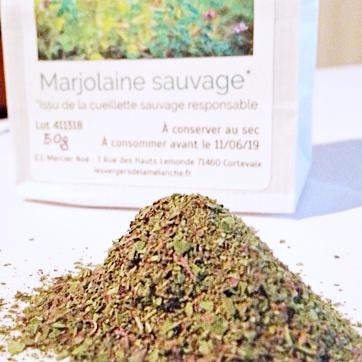 Marjolaine sauvage en poudre – 50g/100g