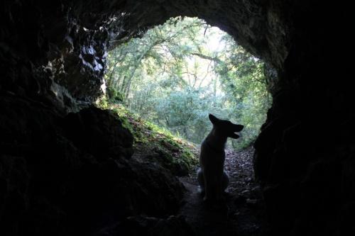 des grottes cachées