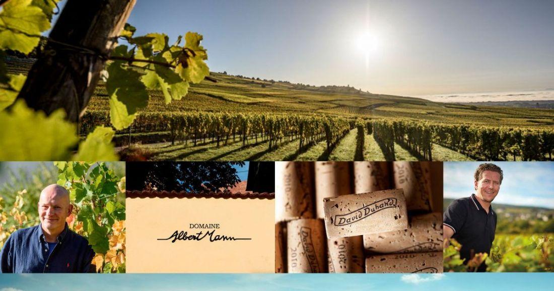 Pinot Blanc Auxerrois Albert Mann