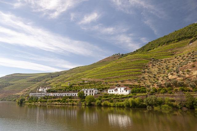 vallée du douro au portugal