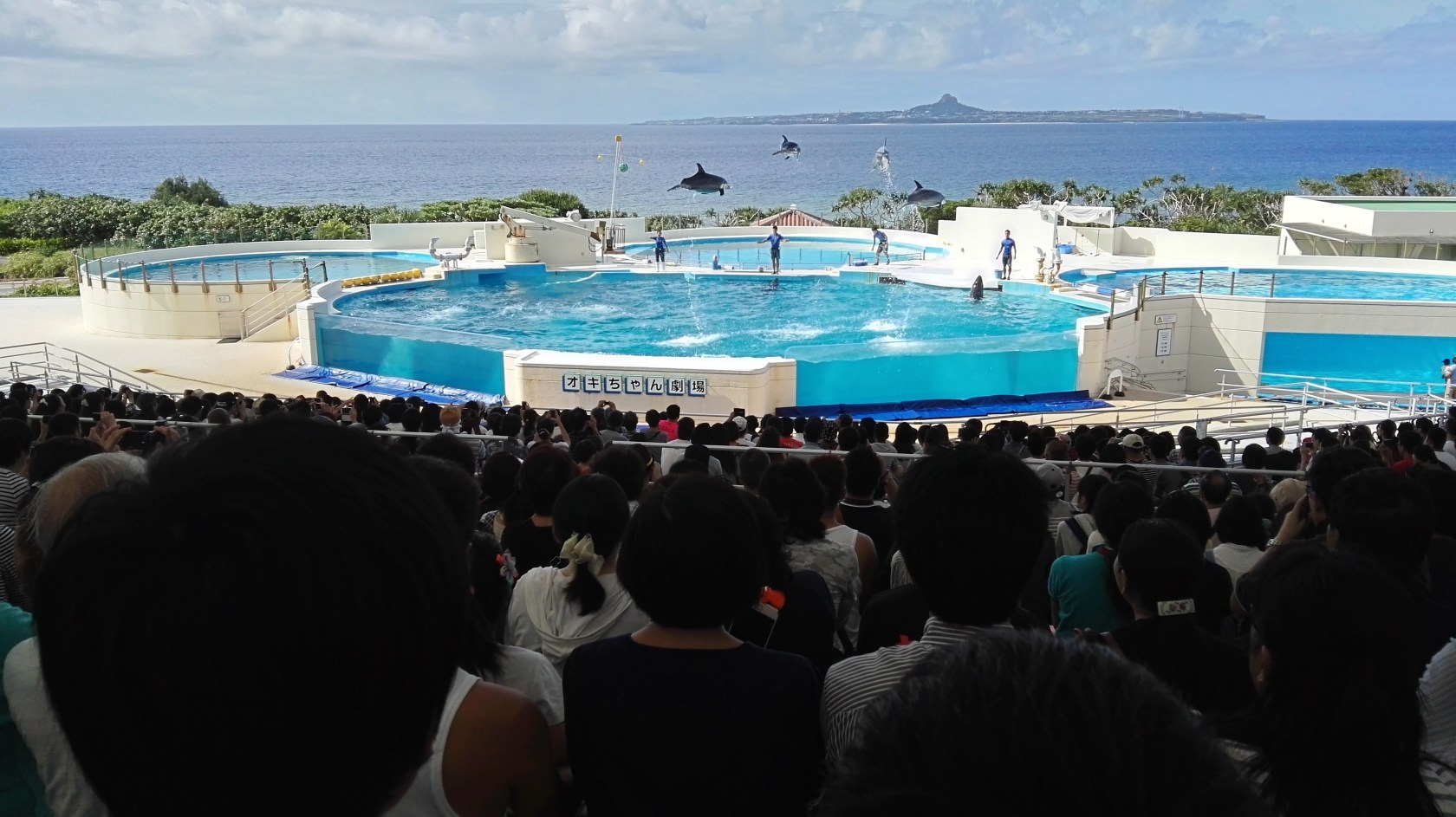 Churaumi Aquarium