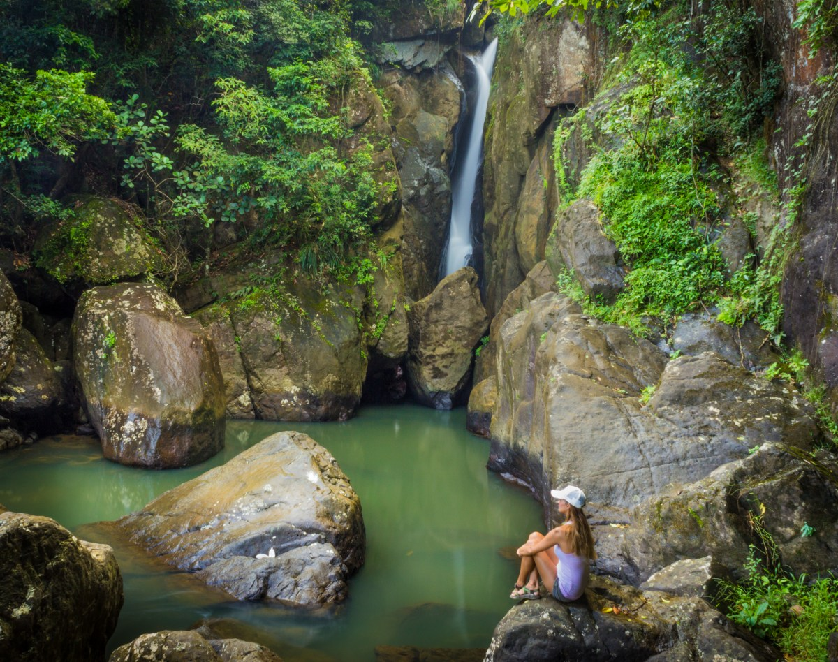 El Yunque National Forest: Jurassic Park Sans Dinosaurs