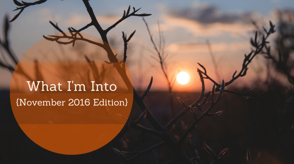 what-im-into-november-2016-edition
