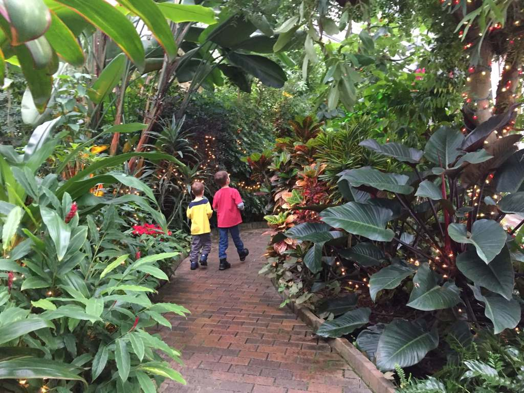Tropical plants at Garfield Park Conservatory with children on path