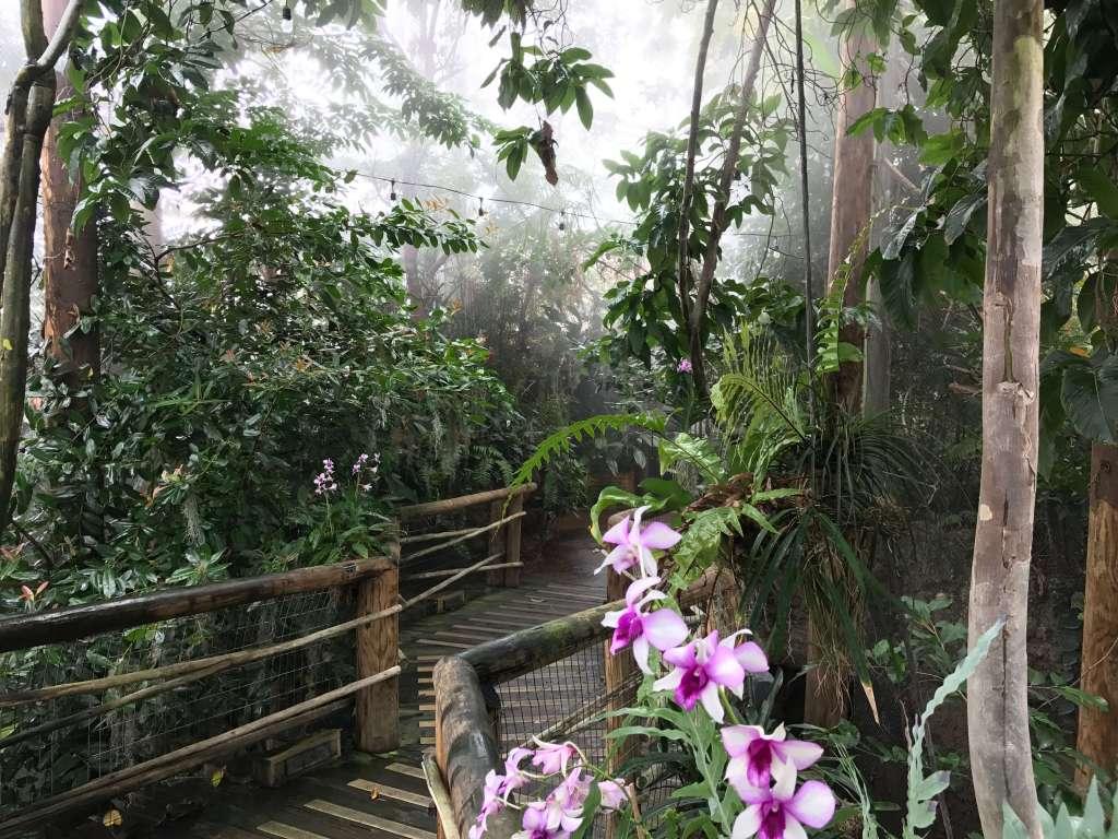 Amazonia at Mesker Park Zoo Evansville, IN