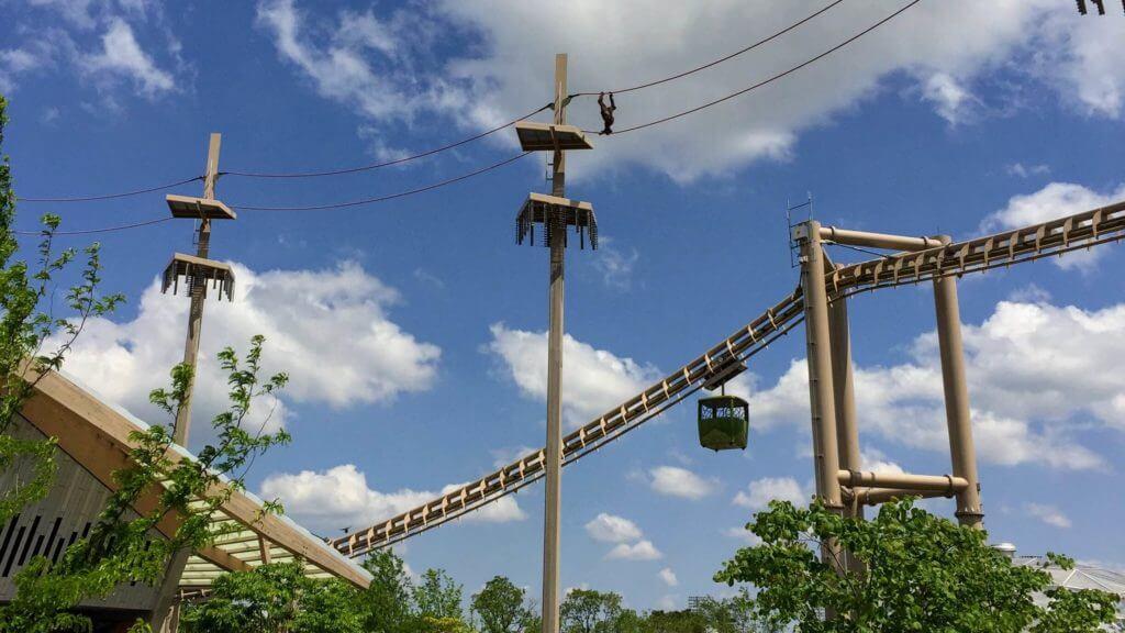 Indianapolis Zoo Orangutan Exhibit