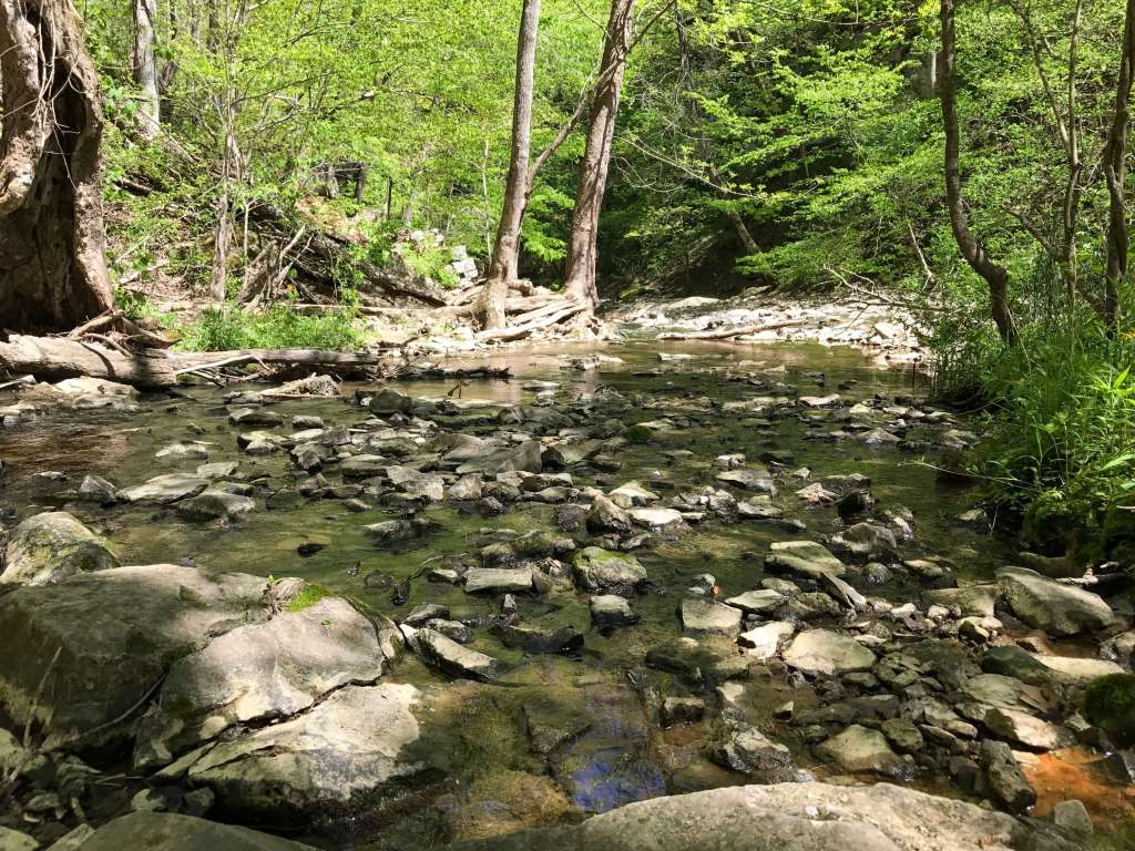 McCormick's Creek State Park Trail 3