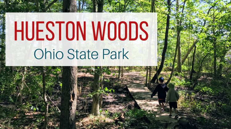 Hueston Woods State Park in Ohio from Let Me Give You Some Advice