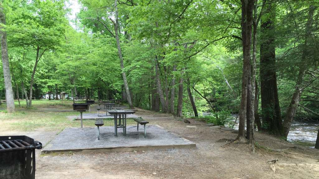Avoiding Crowds in Gatlinburg and GSMNP - Picnic area near Wear Valley entrance
