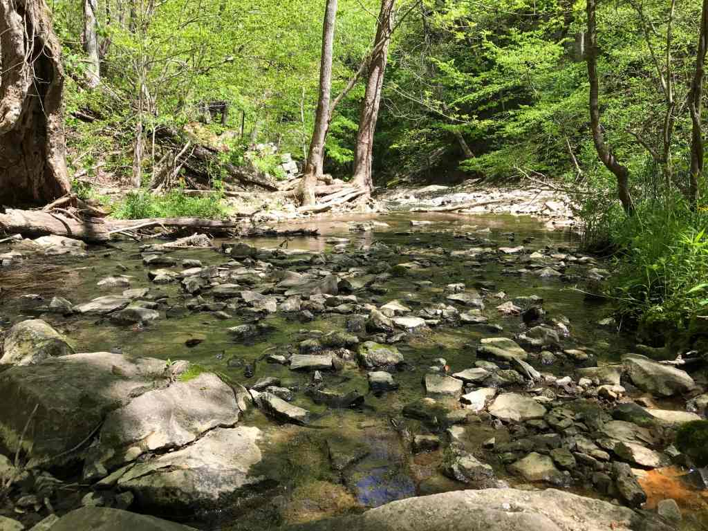 List of Indiana State Parks for Families - McCormick's Creek