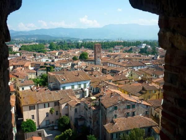 Lucca lucques