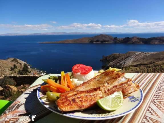 truite avec vue sur le lac titicaca Isla del sol