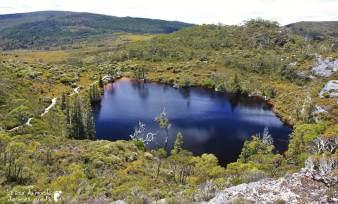 Cradle-park-tasmanie (14)