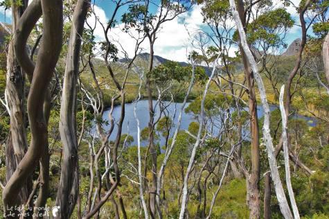 Cradle-park-tasmanie (8)