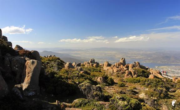 sommet mont wellington