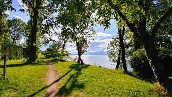 Lac Leman Anthy