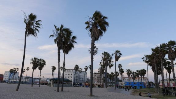 venice beach californie