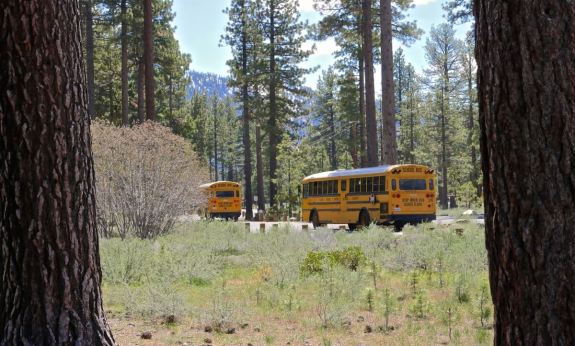 bus lac tahoe