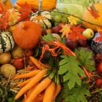 La dieta naturale - La varietà fa bene, di Carla Barzanò