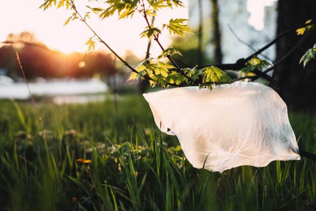 degrado e inquinamento da plastica