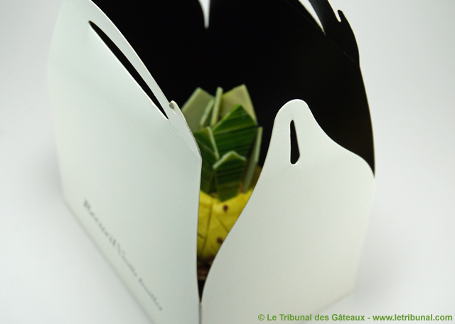 hugo-victor-chou-ananas-5