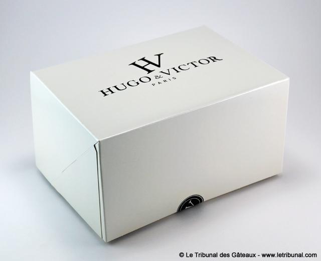 hugo-victor-buche-noel-stella-6-tdg