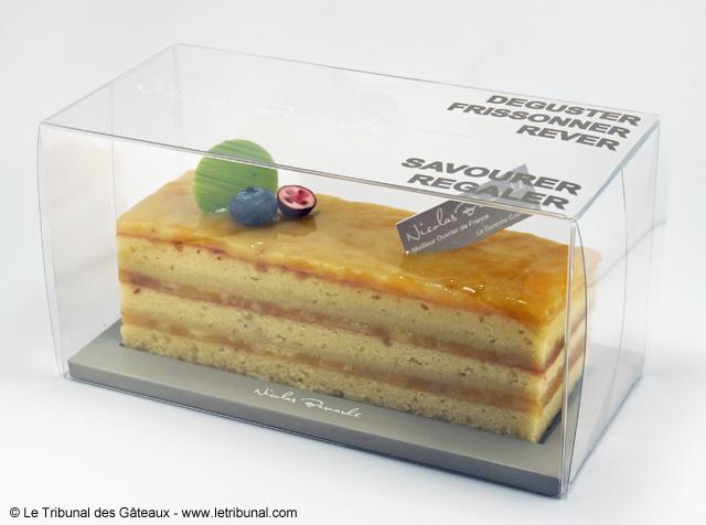 nicolas-bernarde-cake-mangue-coco-citron-7-tdg