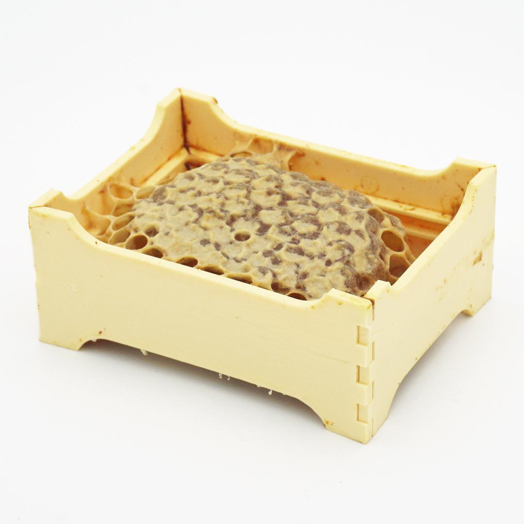 Miel de Montagne en Rayon par La Maison du Miel