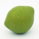 Le Citron Vert par Le Meurice – Cédric Grolet