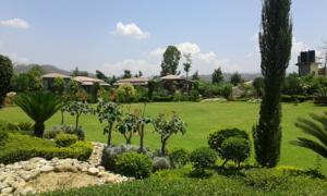 Parfait The Roar Resort In Ramnagar India Lets Book Hotel