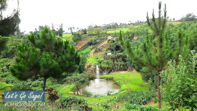 Alomah's Place Organic Farm