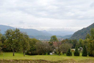 Kamnik View