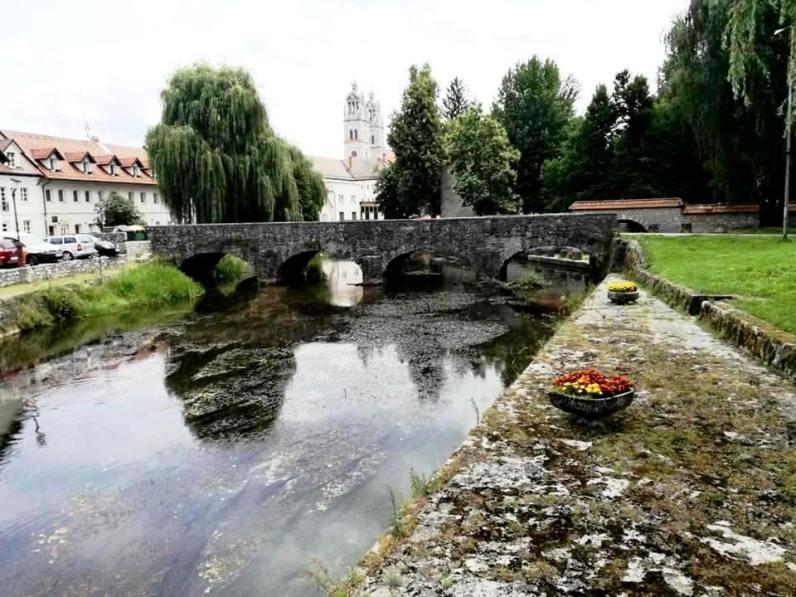 Ribnica, river Bistrica and Galus Quay
