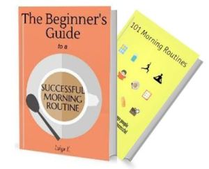 The Beginner's Guide to a Successful Morning Ritual ebook