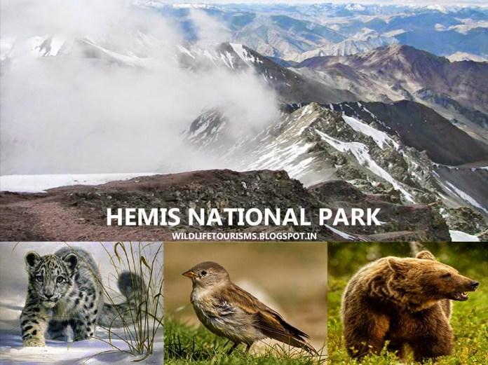 Hemis national park Ladakh